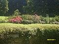 Lancut, Poland - panoramio (4).jpg