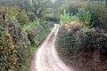 Lane across Hawkridge Brook - geograph.org.uk - 610029.jpg