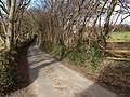 Lane north of Chudleigh Knighton - geograph.org.uk - 1174412.jpg