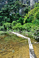 Laos (8087439725).jpg