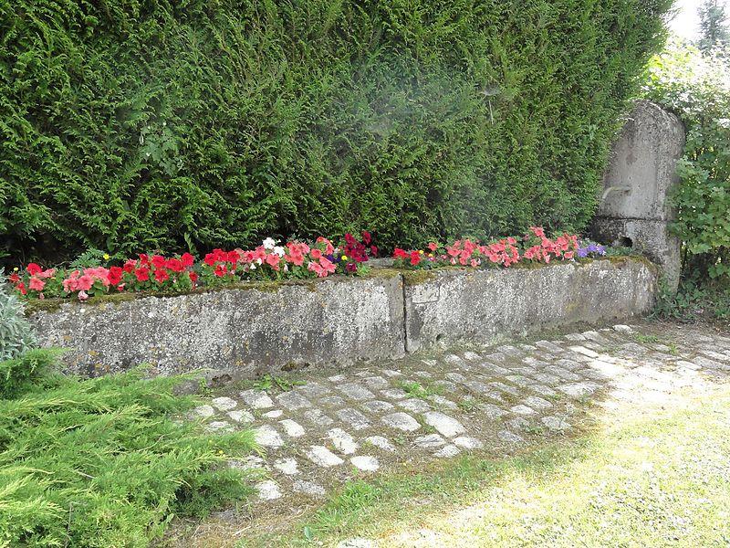 Lavallée (Meuse) fontaine fleurie