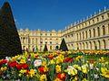 Le château de Versailles dans les fleurs.jpg