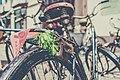 Leaves in bag on bike (Unsplash).jpg