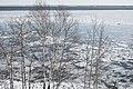 Leif Erikson Park, Duluth 2 21 18 -lakesuperior -winter -trees -ice (40418091841).jpg