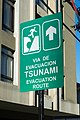 Letrero vía de evacuación tsunami, Viña del Mar 20200206 03.jpg