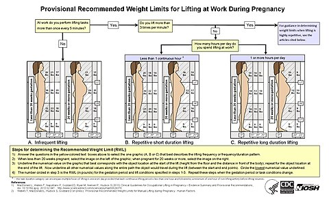 An infographic showing a flow chart leading to three diagrams, each showing two human figures depicting different lengths of gestation, with a grid showing weight limits for different locations in front of the body