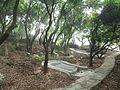 Lingshan Islamic Cemetery - tomb - DSCF8368.JPG