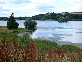 Linlithgow Loch - The eastern end of the loch, from the south. On the top right is Cormorant Island.
