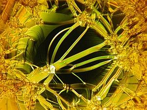 Liquid crystal textures - free standing film 6.jpg
