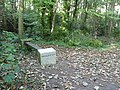 Literary bench at Durlston Country Park - geograph.org.uk - 1627417.jpg
