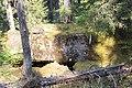 Little Yoho Valley IMG 4872.JPG