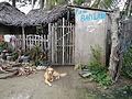 Lobo,Batangasjf0161 22.JPG