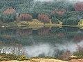 Loch Doine - geograph.org.uk - 355199.jpg