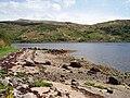 Loch Sunart - geograph.org.uk - 188693.jpg