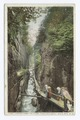 Looking down Flume, Franconia Notch, New Hampshire (NYPL b12647398-73979).tiff