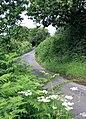 Looking north-east up Tunworth Road - geograph.org.uk - 497687.jpg