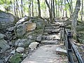 Lovely Trail in Parc du Mont-Royal - panoramio.jpg