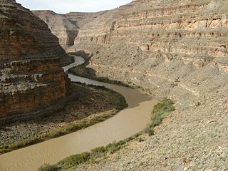 San Juan River (Colorado River tributary)