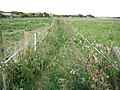 Lyminster, Public footpath - geograph.org.uk - 1509152.jpg