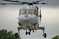 Lynx - RIAT 2004 (2385456461).jpg