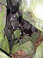 Mágneses-barlang.jpg