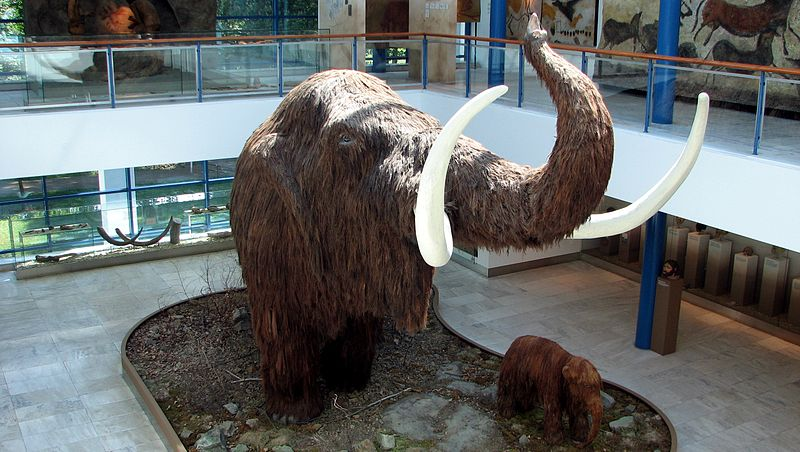 File:Mammoth model I.JPG
