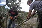 Marines restore historic Italian site 160907-M-ML847-639.jpg