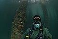 Maritime improvised explosive device (IED) familiarization dive, RIMPAC 2014 140723-N-TM257-150.jpg