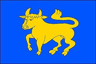 Markvartovice - Image: Markvartovice flag