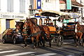 Martinique Carriage on Rue Ernest Deproge IMG 0415 C.JPG
