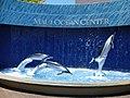 Maui Ocean Center.jpg