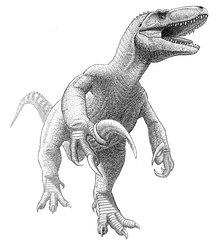 Megaraptor namunhuaiquii jmallon