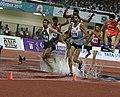 Men 3000m SC Naveen Kumar Of India In Action.jpg