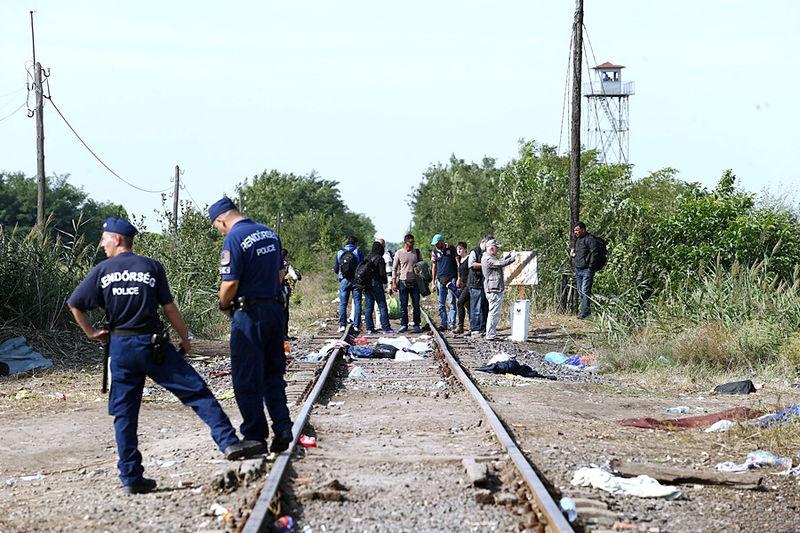 File:Migrants in Hungary 2015 Aug 017.jpg