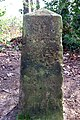 Milestone on Ashburnham coach road - geograph.org.uk - 402855.jpg