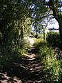 Monarch's Way View - geograph.org.uk - 1767623.jpg