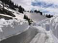 Mont Baker Route 542.jpg