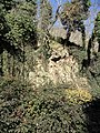 Monte Lozzo, ex cava 03.jpg