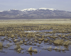 Monte Vista National Wildlife Refuge.jpg