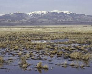 Monte Vista National Wildlife Refuge - Image: Monte Vista National Wildlife Refuge