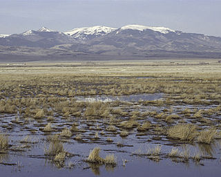 Monte Vista National Wildlife Refuge