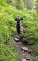 Moose ears on Nidwaldner Höhenweg (DSC 6262).jpg