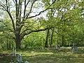 Mount Pisgah Benevolence Cemetery Romney WV 2010 04 25 03.jpg