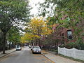 Mount Pleasant Avenue, Roxbury MA.jpg