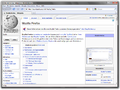 Mozilla Firefox 3.5 Screenshot.png