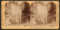 Multinomah Falls (600 feet leap) among the grand cliffs along the Columbia River, Oregon, from Robert N. Dennis collection of stereoscopic views.png