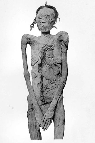 Ahmose-Sitkamose - Mummy of Ahmose-Sitkamose, found in DB320
