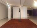 Museu de arte contemporânea da Universidade de São Paulo 06.png