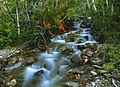 My Public Lands Roadtrip- Wilderness in BLM Nevada (19323891258).jpg