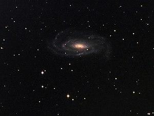 NGC 5033 - NGC 5033. Credit: Peter Bresseler.